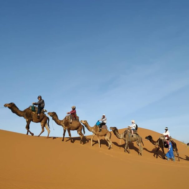 Camel trekking with our 3 days desert tour from Marrakech to Fes