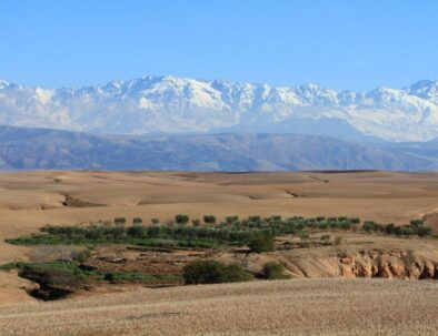Day Trip From Marrakech to Agafay